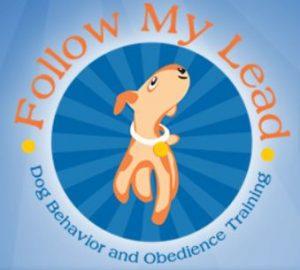 Follow My Lead logo